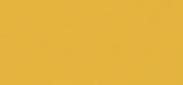 MedicareSure Logo